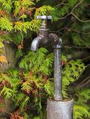 Eau d'un robinet de jardin rouillé — Photo