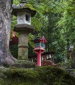 Stone and wooden lanterns near Kasuga Taisha shrine in Nara, — Stock Photo