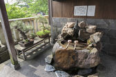Purification ladles and bonsai trees in the Kanazawa old town, J — 图库照片