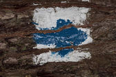 Blue arrow painted on tree bark — Stock Photo