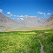 Himalayan valley in Spiti, India — Stock Photo