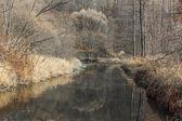 River in november — Stock Photo