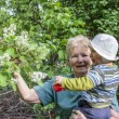 Grandmother shows blooming flowers to her little grandson in g — Photo #38243993