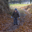 Little boy with sad face, possibly lost walks forest path — Photo #38244043