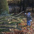 Little boy inspects hewn tree branches with twig in park — Photo #38244073