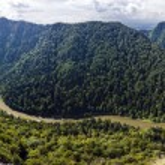 Panoramic photo of spectacular river canyon in Pieniny, Poland. — Stock Photo #39774227