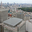 Industrial view of Tokyo with busy roads and skyscrapers — Stock Photo