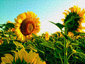 Sunflowers oil painting illustration background — Foto Stock