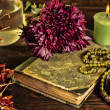 Old book, flower, candle and open jewelry box with green necklace still life, renaissance concept with dark grunge light — Foto de Stock