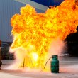 Stock Photo: Fire-fighter trains extinguishing fire