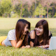 Young pretty woman with laptop lying in a park — Stock Photo #32506211