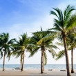 Exotic, beautiful and secluded beach with palm trees — Stock Photo