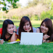 Young students group with computer studying in spring outdoors  — Stock Photo