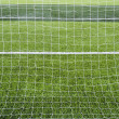 Stock Photo: Goal net with green grass field.