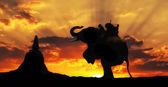 Sylwetka słoń w tajlandii — Zdjęcie stockowe