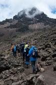 Trekkers on Kilimanjaro — Stock Photo