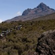 Porters in moorland, Mawenzi, Kilimanjaro — Stock Photo