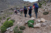 Group walking in to Toubkal — Stock Photo