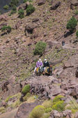 Old Berber women on donkeys — Stock Photo