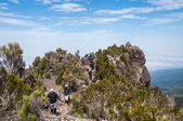On Shira Ridge, Kilimanjaro — Stock Photo
