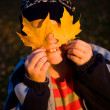Girl holding autumn leaves — Stock Photo