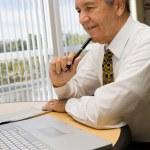 Senior businessman working — Stock Photo