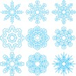 Beautiful Snowflakes Set for Christmas Winter Design — Stock Vector