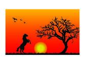 Zachód słońca — Wektor stockowy