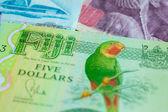 Five dollars from Fiji — Stock Photo