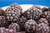 The frozen berries of blackberry on a white-blue background — Stock Photo