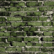 Brick joke brickwork background — Foto Stock