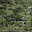 Brick joke brickwork background — Stok fotoğraf