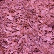 Wooden shavings background — Stock Photo #31269357
