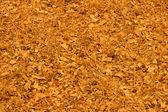 Wood shavings (sawdust texture) — Stock Photo