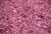 Wooden shavings background — Stock Photo