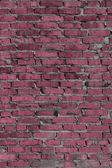Fond de couleur brique — Photo