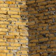 Colored brickwork background — Stock Photo #31515705