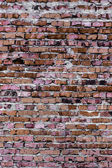 Texture and background (brick wall) — Stockfoto