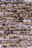 Brick wall (background and texture) — Stock Photo
