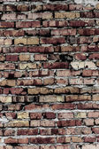 Brick wall (background and texture) — Foto Stock