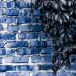 Texture and background (brick wall) — Stock Photo