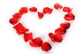 Prachtige hart van rood roze bloemblaadjes — Stockfoto