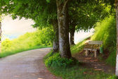 путь через горы — Стоковое фото