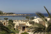 Egypt marsa alam — Foto Stock