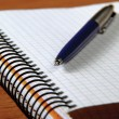 Foto Stock: Notebook and pen