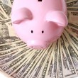 Piggy bank on dollars — Stock Photo