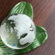 A glass globe on green leaves — Stock Photo