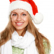 Portrait of a beautiful woman wearing a santa hat — Stock Photo #40382029