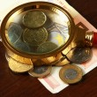 Magnifying glass and money euro — Stock Photo #43593955