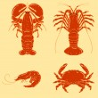 Cartoon seafood object: shrimp, crab, lobster, crayfish — Stock Vector
